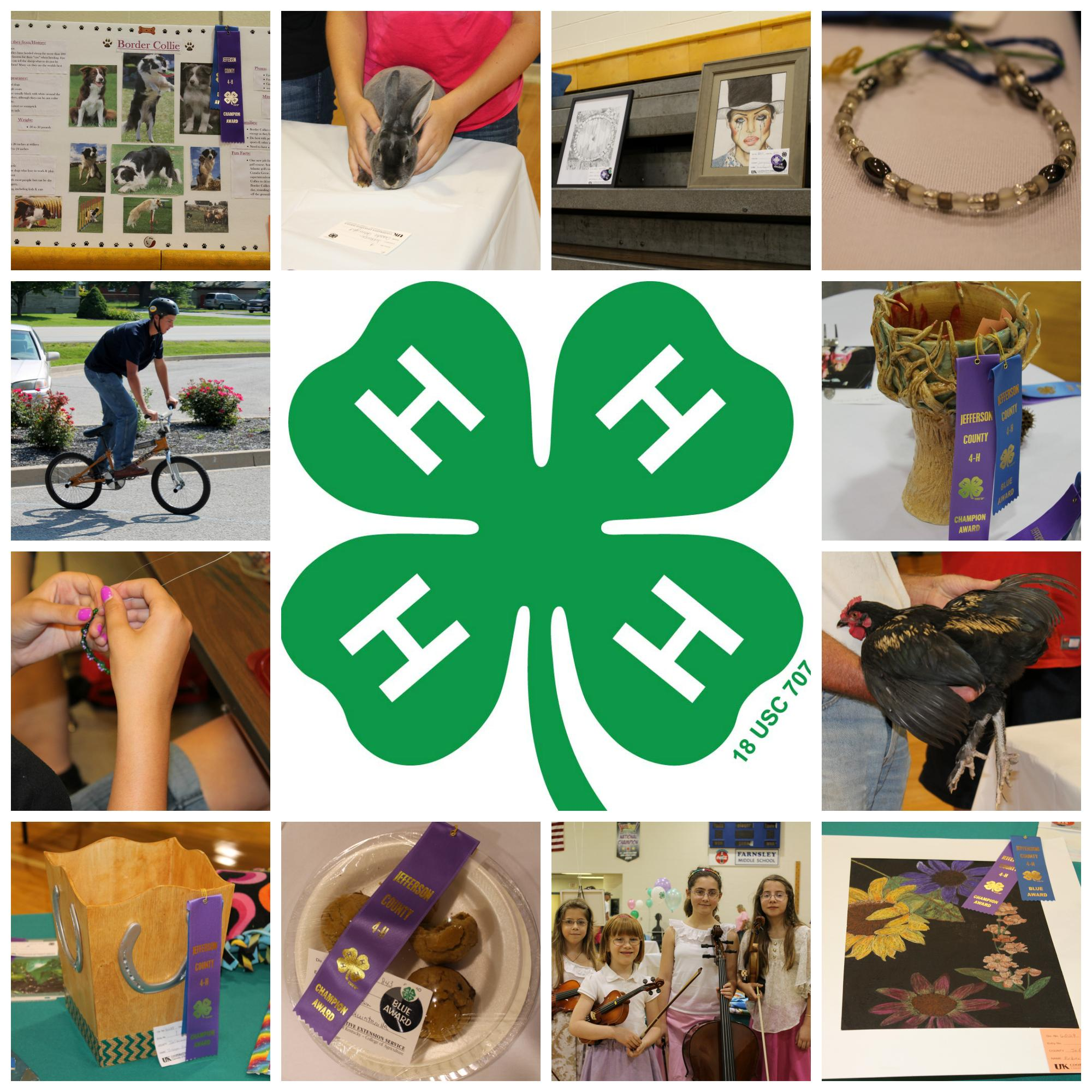 4-H photos from fair