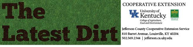 Latest Dirt Newsletter